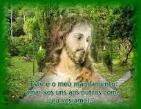 """""""  A caridade é a plenitude da Lei"""" – Homilia -XXIII  Domingo do Tempo Comum Ano A"""