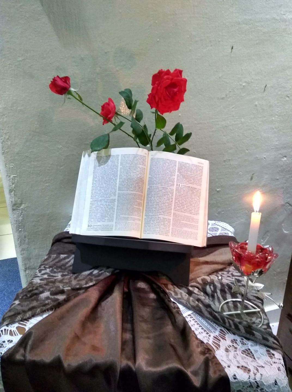 A Vinha do Senhor e os frutos esperados por Deus – Homilia- XXVII Domingo Comum do Tempo A