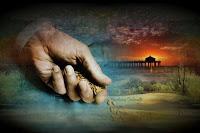 O Reino de Deus germina silenciosamente- Homilia 11° Domingo do Tempo Comum Ano B
