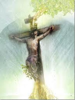 Nossa prática religiosa é agradável a Deus? Homilia – 22º Domingo do Tempo Comum – Ano B – Dom  Otacilio F. de Lacerda.